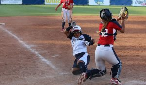 WBSC-sanctioned USA vs. Japan All-Star Series set to begin