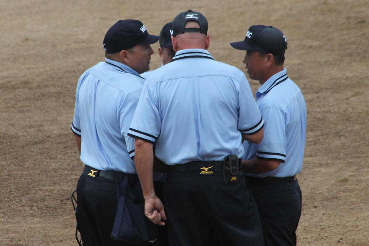 2017_umpire_image