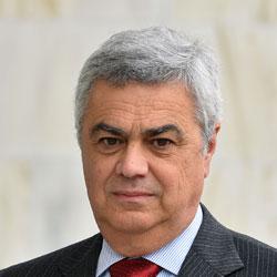 Angelo Vicini